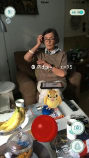 pokemon go pidgey.PNG